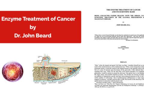 The Enzyme Treatment of Cancer Dr John Beard